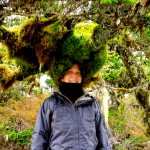 Moss Head